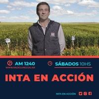 Logo INTA en Acción