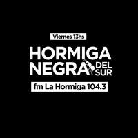 Logo Hormiga Negra del Sur