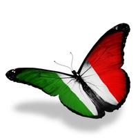 Logo Italia fra noi