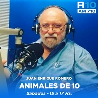 Logo Animales de 10