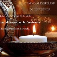 Logo Un Camino Al Despertar De Conciencia