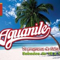 Logo Aguanile - Tu programa de Salsa