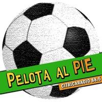 Logo Pelota al Pie