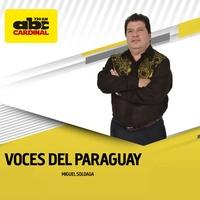 Logo Voces del Paraguay