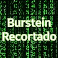 Logo Burstein Recortado