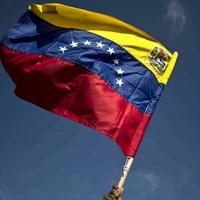 Logo Venezuela en vivo