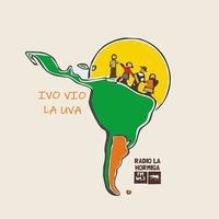Logo Ivo Vio la Uva