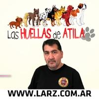 Logo LAS HUELLAS DE ATILA