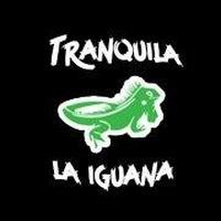 Logo Tranquila la Iguana