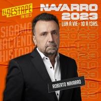 Logo Navarro 2023