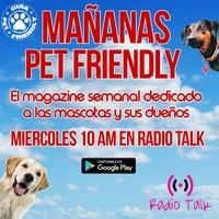 Logo Mañanas Pet Friendly