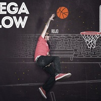 Logo Megaflow